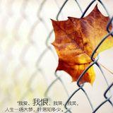 qian97678