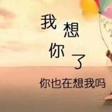 chen303013146