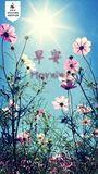 liuqingshandin1479262951943825