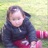 yangjun224761