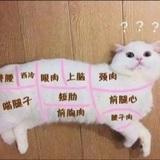 tiffany_kim