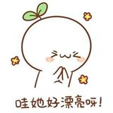 信玉田92542