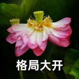tb3668908_2013