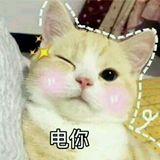 taobao13194