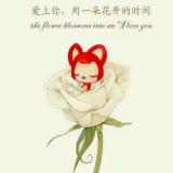没刺的玫瑰还是玫瑰么