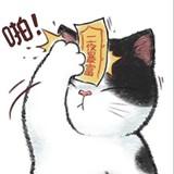 Cat-Moe