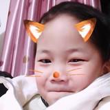 fei_飞66