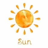 sunflower873148843