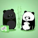 pandaqurui