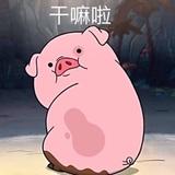 晓晓薇and小小苗