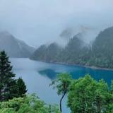 yang阳阳521love