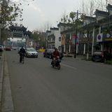 yuqiaog72