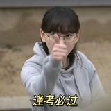 wang宣yi