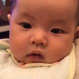 zhuhongc1990516