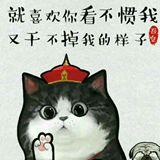 xinyuwen2014