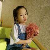 zhengjiangling1990