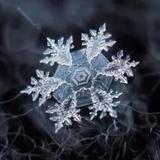 瑞雪寒冰0703