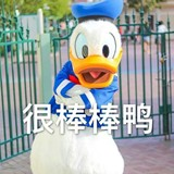 y_c_y_hui