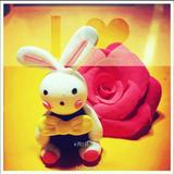 sun_hc