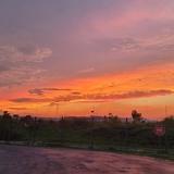 shenwei163302