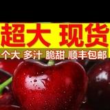 8125zhang张跟牛