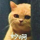 zhang15044002354