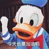 柴富豪530320582