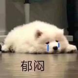 敏恋allensu1478939050263417