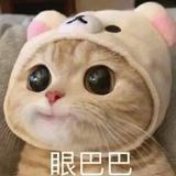 夏忆年华00