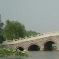 shishaohong123