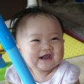 shengying_vip