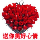 jin1333805