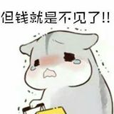 wang6601270