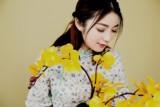 jieqiongshu