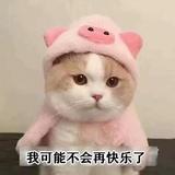 徐华美00
