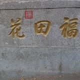莞苓0929