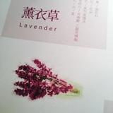 qiangwei1186