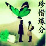 青枫heart